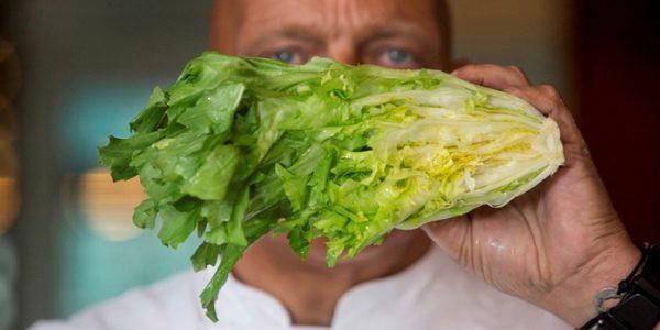 Herman den Blijker over andijvie