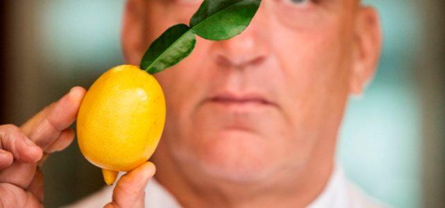Herman den Blijker over citroenblad