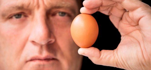 Herman den Blijker over gefrituurde eieren
