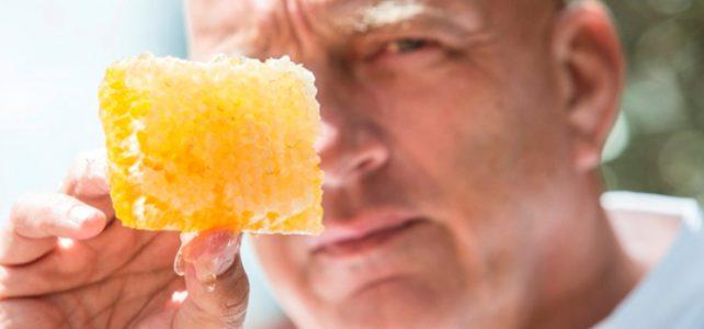 Herman den Blijker over honing