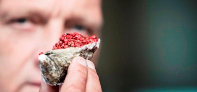 Herman den Blijker over oesters met roze peper